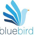 Bluebird Mental Health Inc..jpg